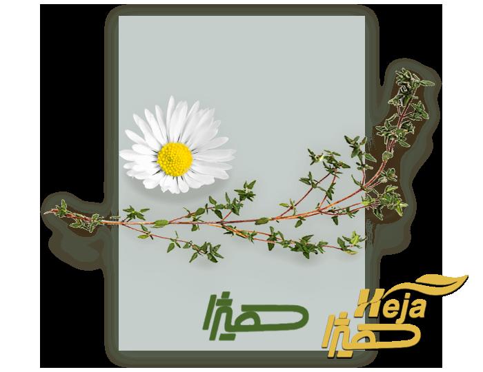 home_herbal_contentslider1